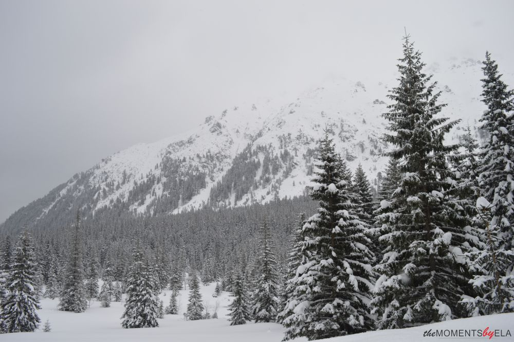 www.themomentsbyela.pl - TATRY ZIMĄ - SPACER NA MORSKIE OKO